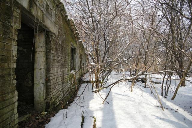 Grányitok a hóban: téli túra a császári szovjet laktanya területén#3