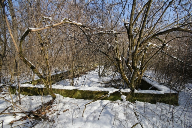 Grányitok a hóban: téli túra a császári szovjet laktanya területén#37
