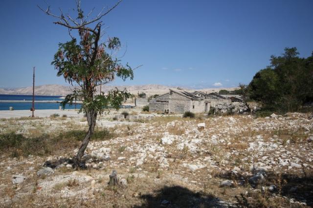 Goli otok, a titói Jugoszlávia sötét titka#52